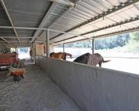 finca for sale with stables