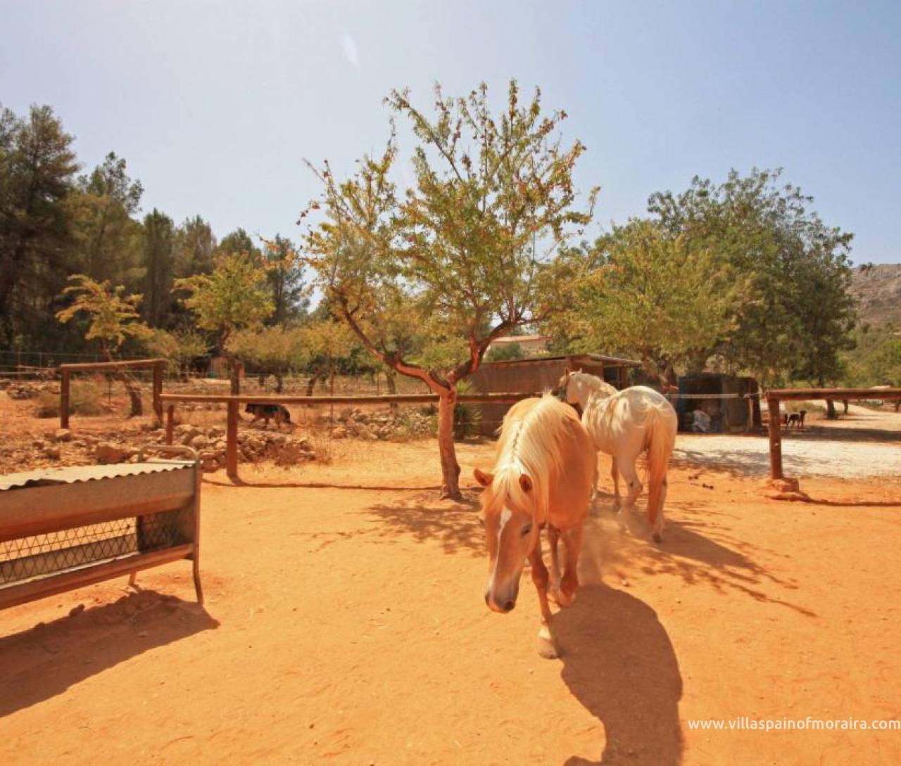 Sale - Finca - Jalon Valley